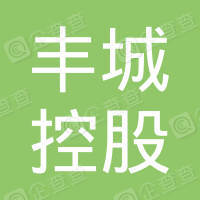 豐城控股有限公司