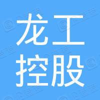 中國龍工控股有限公司
