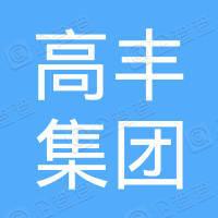 高豐集團控股有限公司