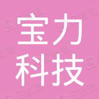 中國寶力科技控股有限公司