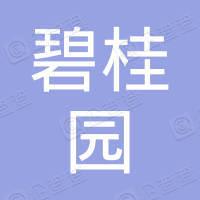 碧桂園控股有限公司