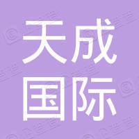 天成國際集團控股有限公司