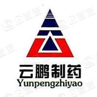 云鹏医药集团有限公司