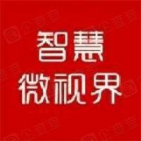 北京智慧视界科技有限公司