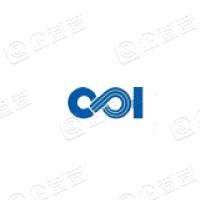 国家电投集团东方新能源股份有限公司