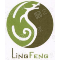 黑龙江灵峰药业股份有限公司
