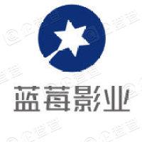 蓝莓影业(上海)有限公司