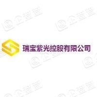 瑞宝紫光控股有限公司