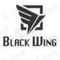 上海黑翼资产管理有限公司