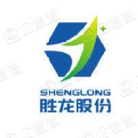郑州胜龙信息技术股份有限公司