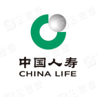 中国人寿财产保险股份有限公司龙安区支公司