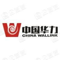 中国华力控股集团有限公司