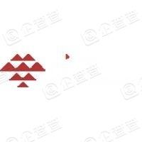 广西新影响文化投资集团有限公司
