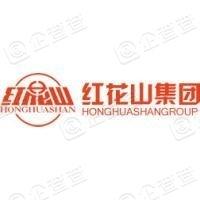 芜湖红花山投资集团有限公司