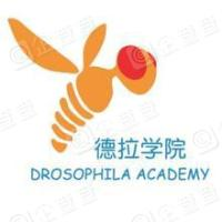 北京德拉科技有限公司