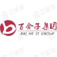 福建百合子科技集团股份有限责任公司