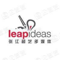 上海张江超艺多媒体系统股份有限公司
