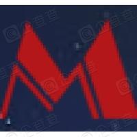 郑州轻冶科技股份有限公司