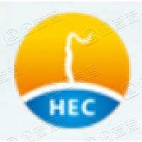 广东东阳光科技控股股份有限公司
