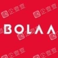 博拉网络股份有限公司