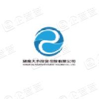 湖南大水投资控股有限公司