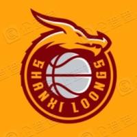 山西国投职业篮球俱乐部有限公司