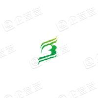 西藏银河科技发展股份有限公司